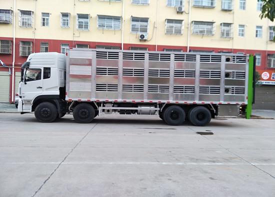 高端全铝合金畜禽运输车推荐
